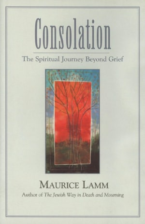 Consolation (Online Book)