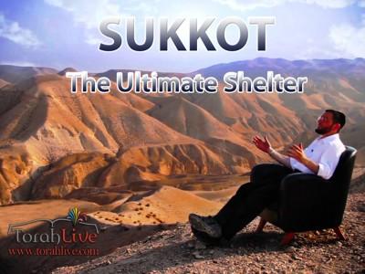 torah live sukkos logo