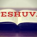 Teshuva Book