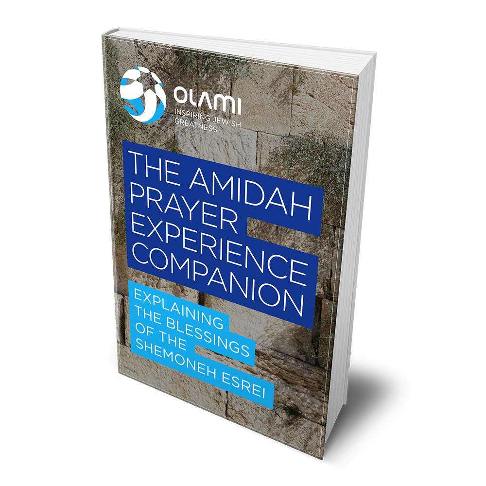 The Amidah Prayer Experience Companion: Explaining the